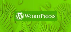 fundo verde com folhas e plantas